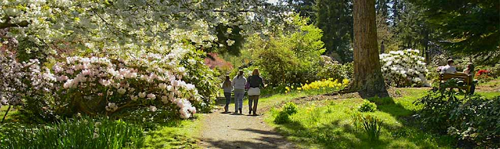 Meerkerk Gardens | Cascade Loop